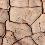 Deshidratación cutánea: ¿cual es la cosmética mas adecuada?
